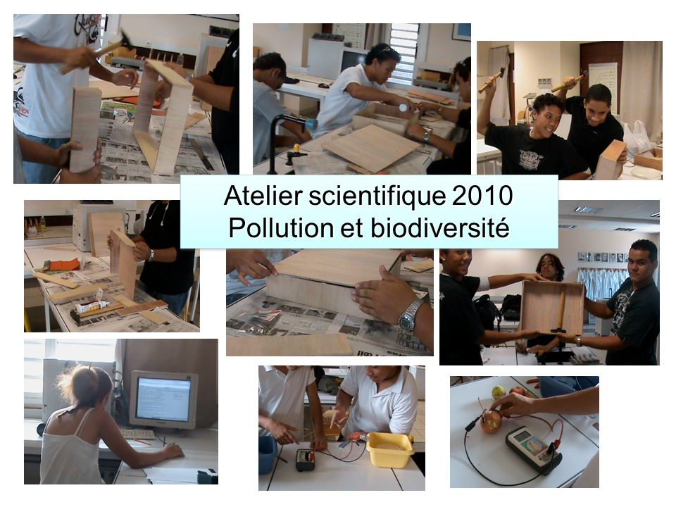 Atelier scientifique 2010 Pollution et biodiversité Atelier scientifique 2010 Pollution et biodiversité