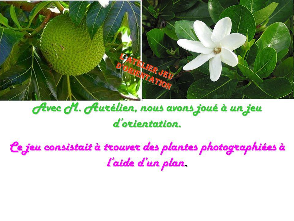 Avec M. Aurélien, nous avons joué à un jeu dorientation. Ce jeu consistait à trouver des plantes photographiées à laide dun plan. Latelier jeu dorient