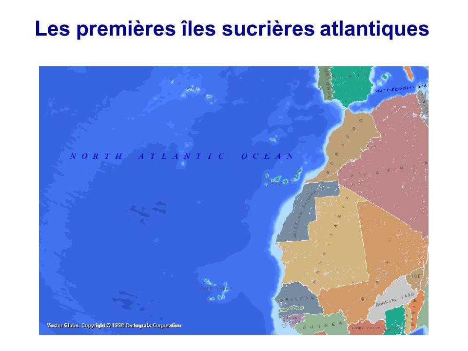 Les premières îles sucrières atlantiques
