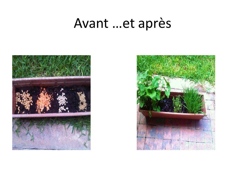Avant …et après