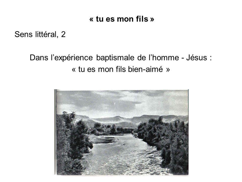 « tu es mon fils » Sens littéral, 2 Dans lexpérience baptismale de lhomme - Jésus : « tu es mon fils bien-aimé »