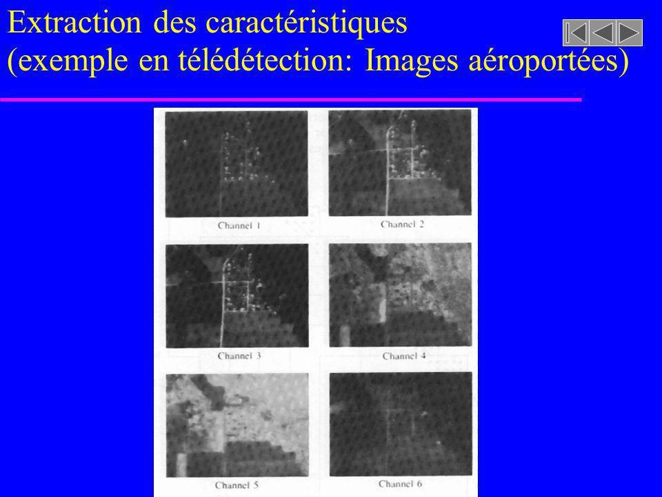 Extraction des caractéristiques (exemple en télédétection: Images aéroportées)