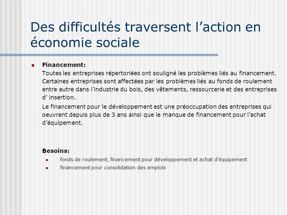 Des difficultés traversent laction en économie sociale Financement: Toutes les entreprises répertoriées ont souligné les problèmes liés au financement.