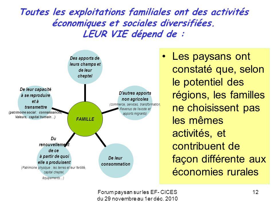Forum paysan sur les EF- CICES du 29 novembre au 1er déc. 2010 12 Toutes les exploitations familiales ont des activités économiques et sociales divers