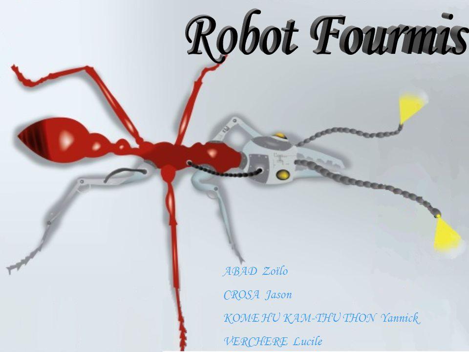 Pour pouvoir programmer notre robot, nous avons dû choisir quel langage nous allions utiliser pour la programmation.