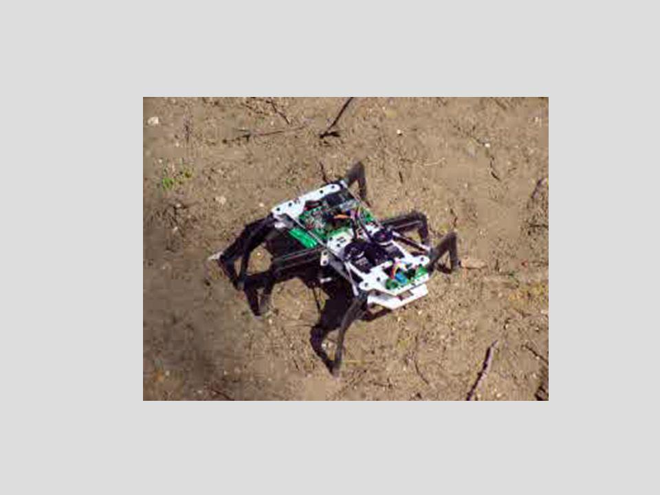 Pour un robot hexapode, la marche la plus courante est le tripode alterné.
