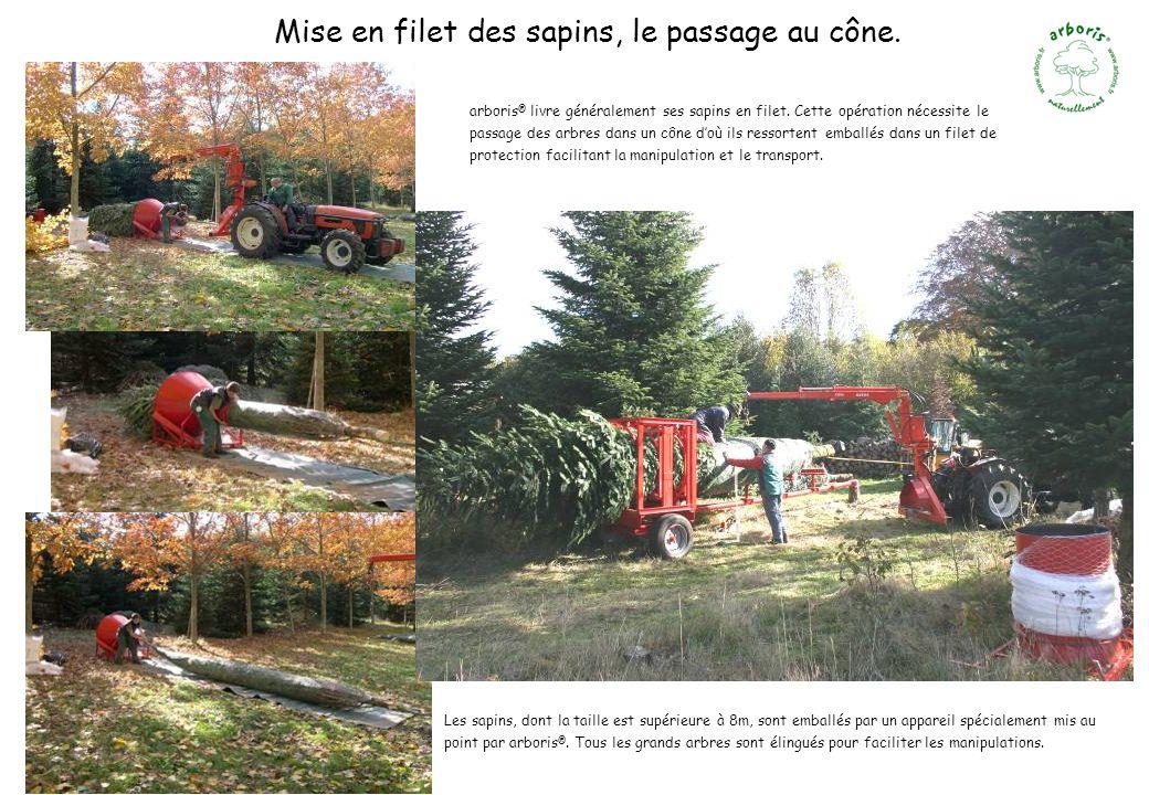 Mise en filet des sapins, le passage au cône. arboris ® livre généralement ses sapins en filet. Cette opération nécessite le passage des arbres dans u