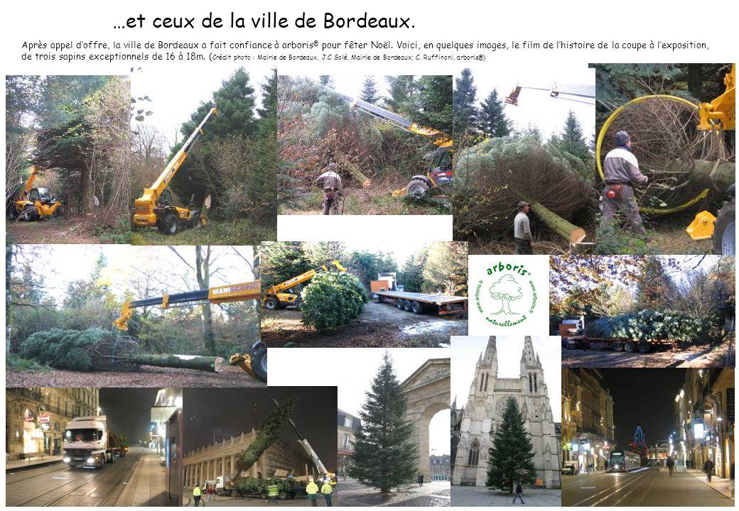 …et ceux de la ville de Bordeaux. Après appel doffre, la ville de Bordeaux a fait confiance à arboris ® pour fêter Noël. Voici, en quelques images, le