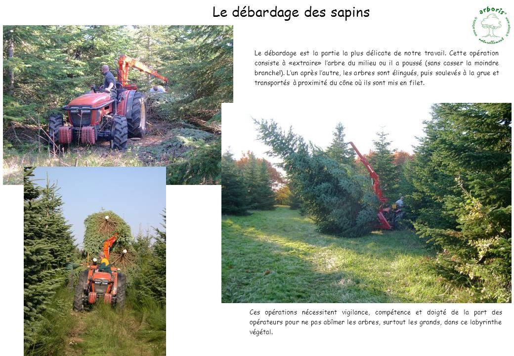 Le débardage des sapins Ces opérations nécessitent vigilance, compétence et doigté de la part des opérateurs pour ne pas abîmer les arbres, surtout le