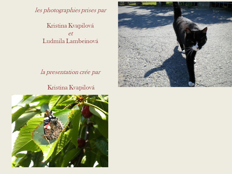 les photographies prises par Kristina Kvapilová et Ludmila Lambeinová la presentation crée par Kristina Kvapilová