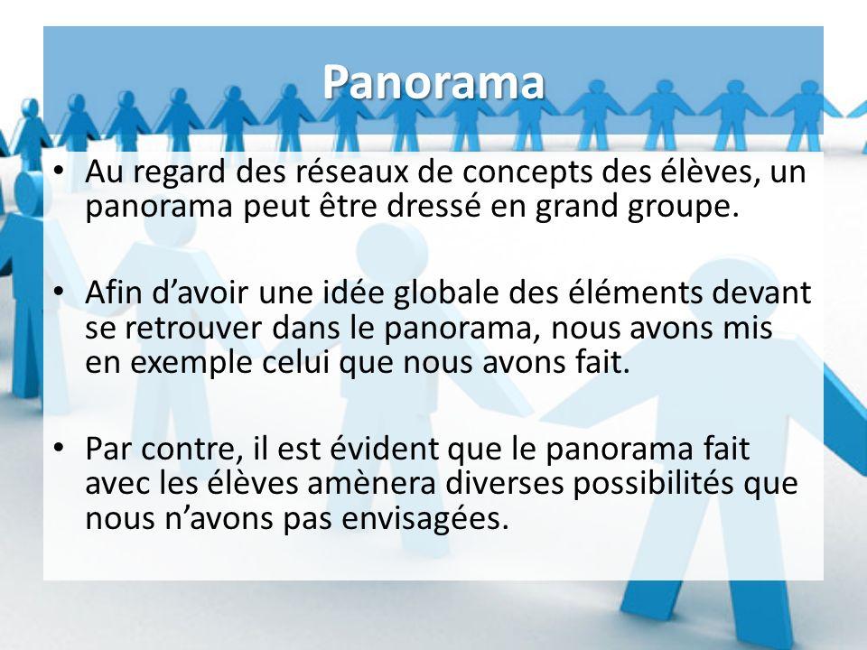 Panorama Au regard des réseaux de concepts des élèves, un panorama peut être dressé en grand groupe.