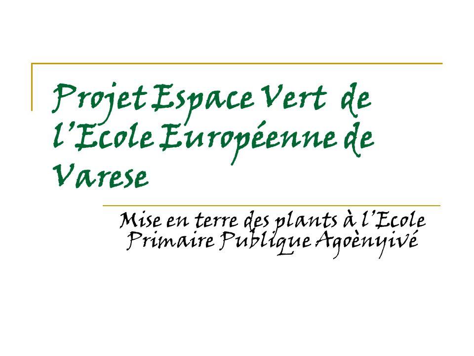 Projet Espace Vert de lEcole Européenne de Varese Mise en terre des plants à lEcole Primaire Publique Agoènyivé