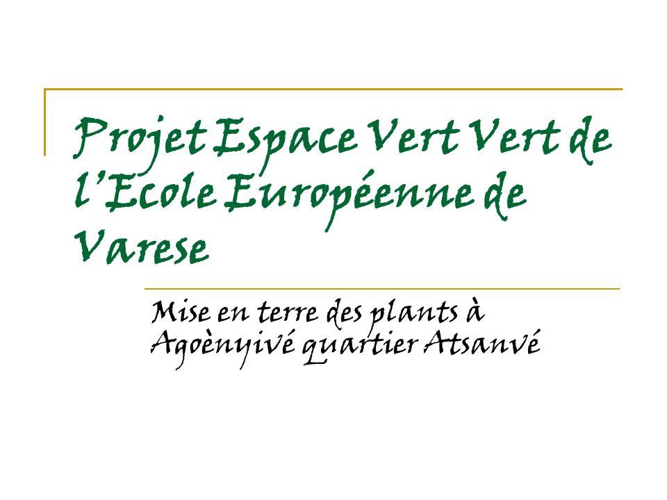 Projet Espace Vert Vert de lEcole Européenne de Varese Mise en terre des plants à Agoènyivé quartier Atsanvé