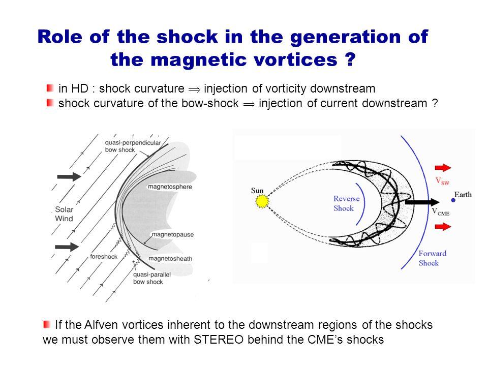 Role of the shock in the generation of the magnetic vortices ? Les chocs sans collisions sont des sources de particules énergétiques observées dans le