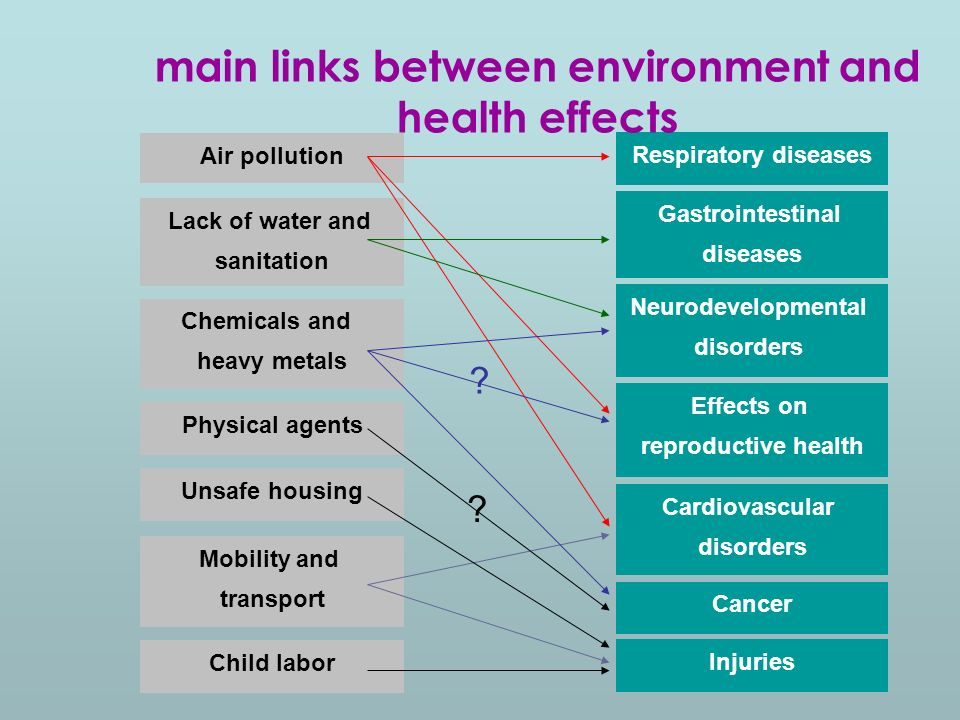 Air pollution Lack of water and sanitation Chemicals and heavy metals Physical agents Unsafe housing Mobility and transport Child labor Respiratory diseases Gastrointestinal diseases Neurodevelopmental disorders Cardiovascular disorders Cancer Injuries Effects on reproductive health .