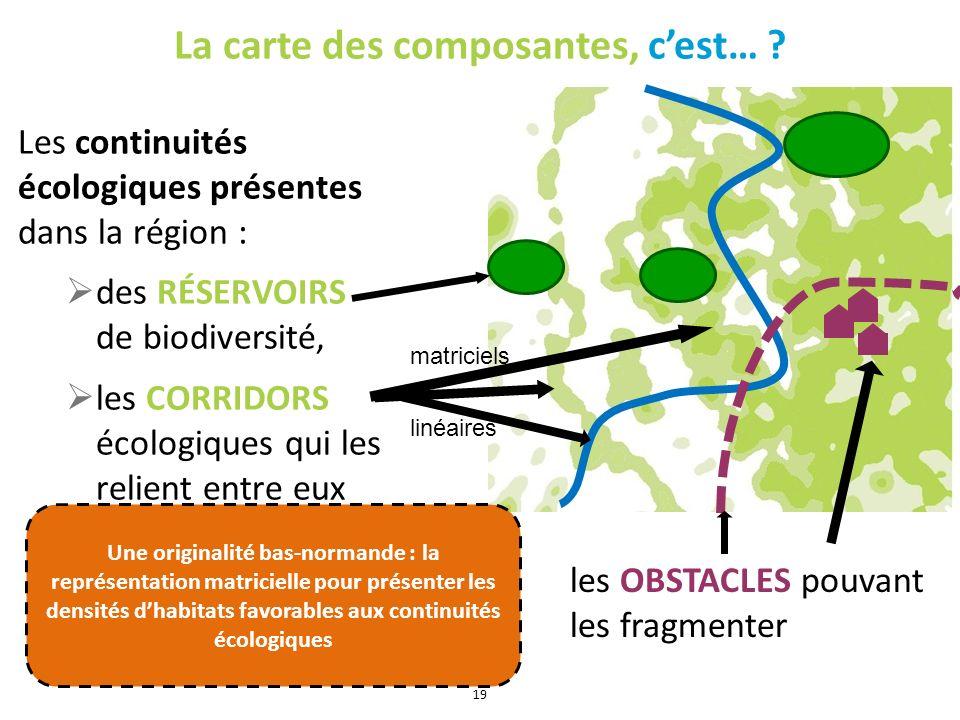 La carte des composantes, cest… ? Les continuités écologiques présentes dans la région : des RÉSERVOIRS de biodiversité, les CORRIDORS écologiques qui