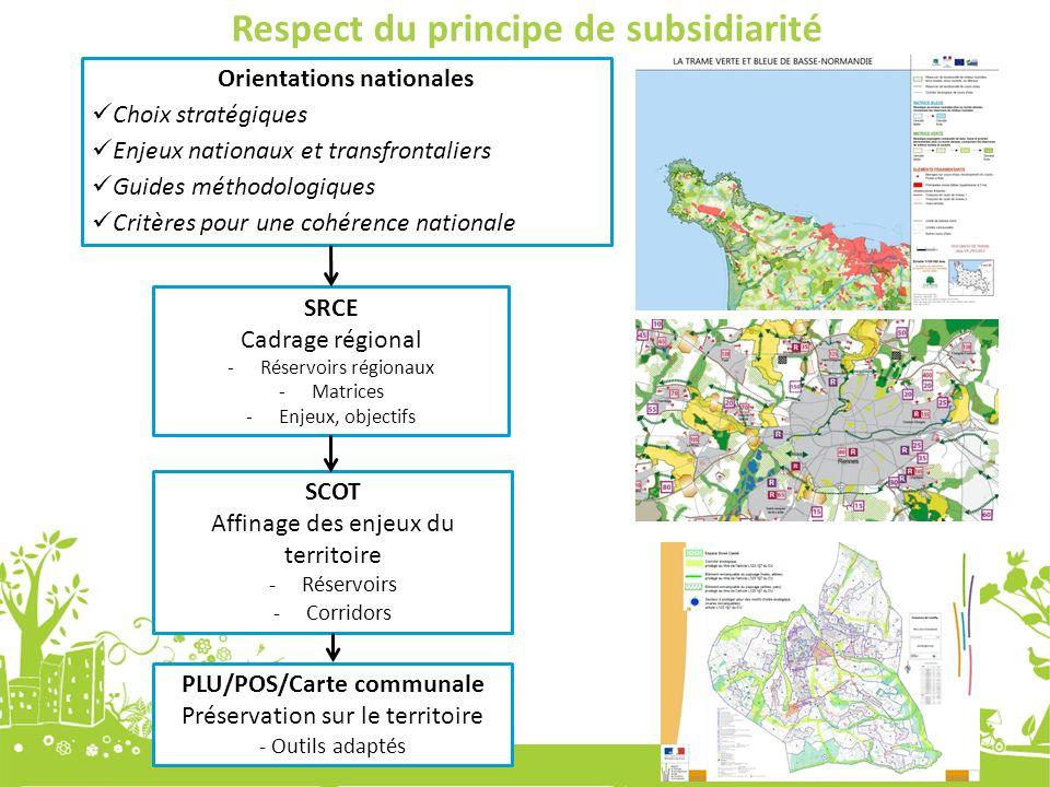 SRCE Cadrage régional -Réservoirs régionaux -Matrices -Enjeux, objectifs SCOT Affinage des enjeux du territoire -Réservoirs -Corridors PLU/POS/Carte c