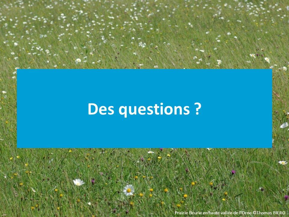 Des questions ? Prairie fleurie en haute vallée de l Orne ©Thomas BIERO