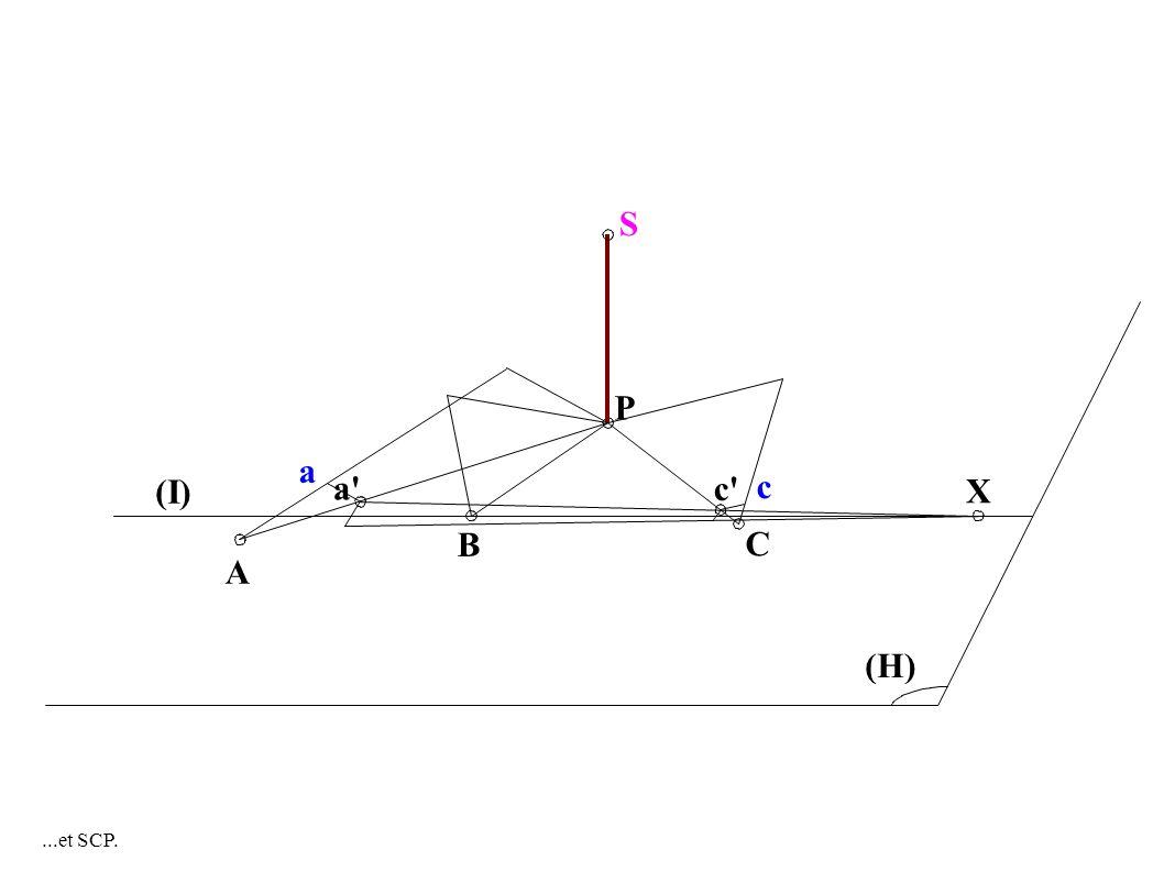 A a (I) S P C B c c (H) X a...et SCP.