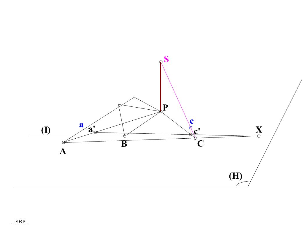 A a (I) S P C B c c (H) X a...SBP...