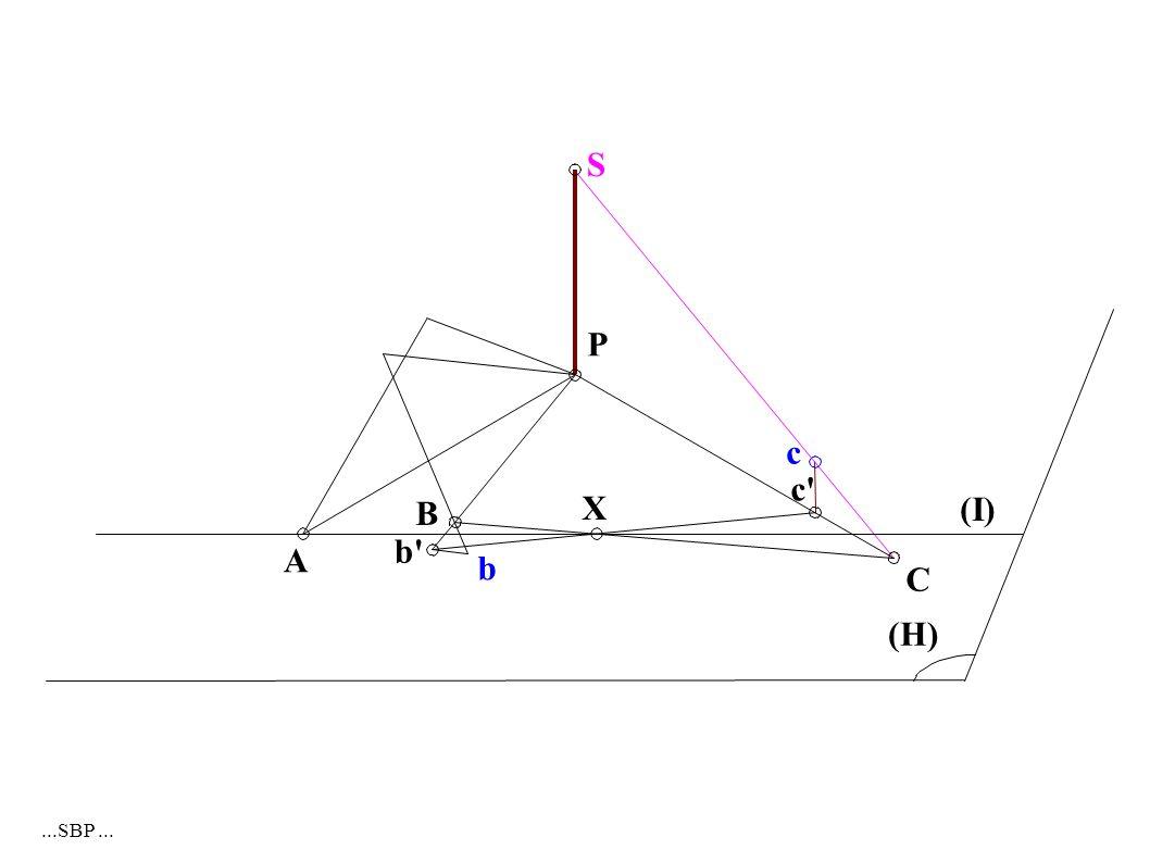 A B b P c c X C (I) (H) S b...SBP...