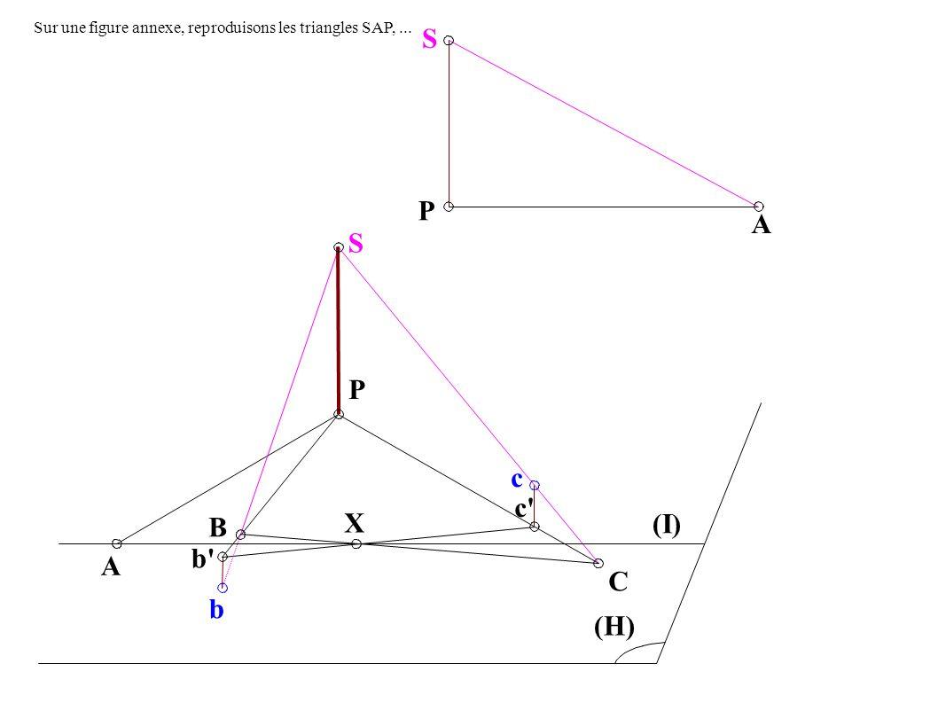 A B b P c c X C (I) (H) S b A S P Sur une figure annexe, reproduisons les triangles SAP,...