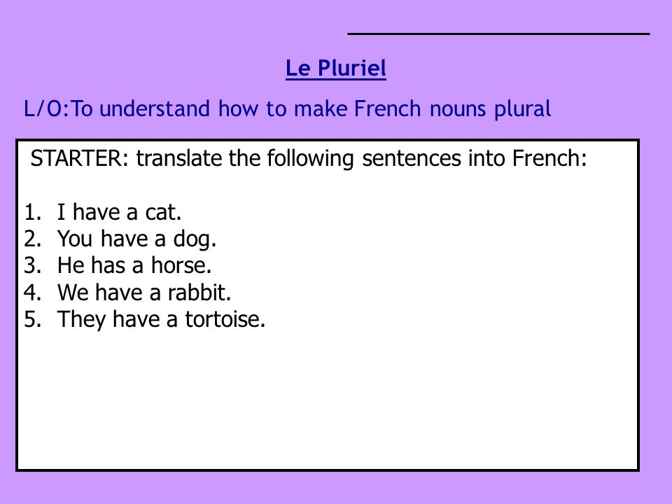 Le Pluriel L/O:To understand how to make French nouns plural STARTER: translate the following sentences into French: 1.I have a cat.