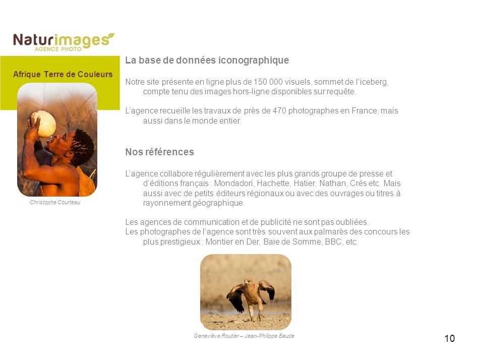 10 La base de données iconographique Notre site présente en ligne plus de 150 000 visuels, sommet de liceberg, compte tenu des images hors-ligne disponibles sur requête.