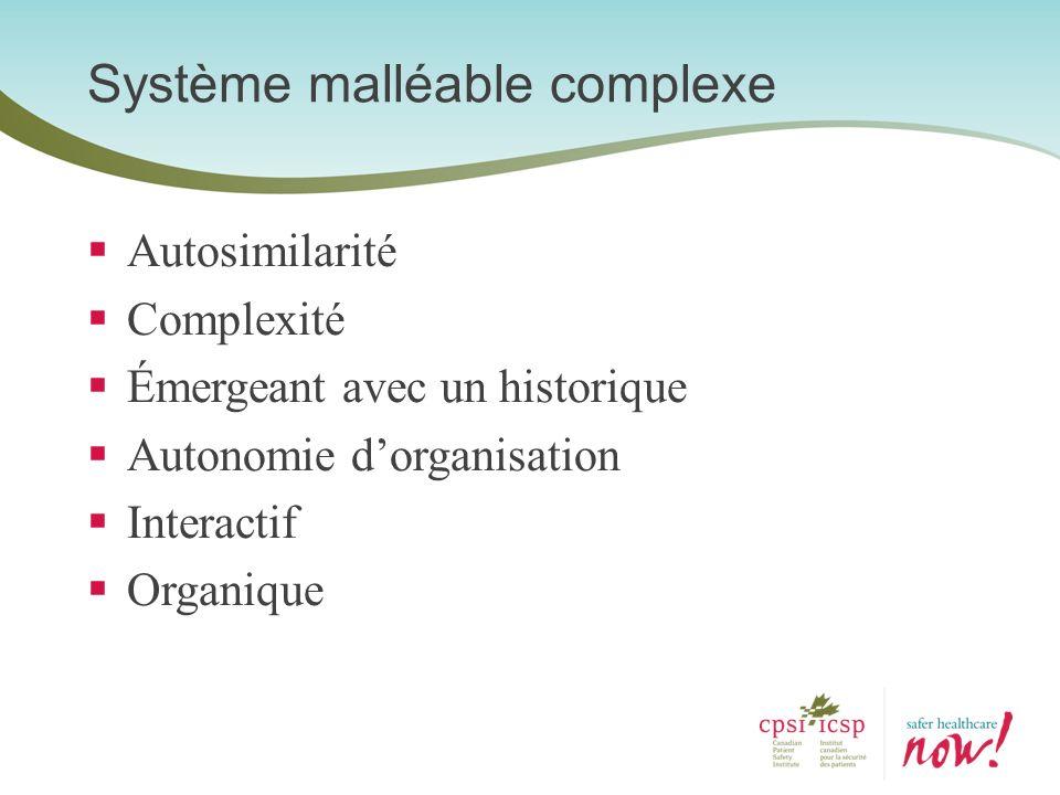 Autosimilarité Complexité Émergeant avec un historique Autonomie dorganisation Interactif Organique Système malléable complexe