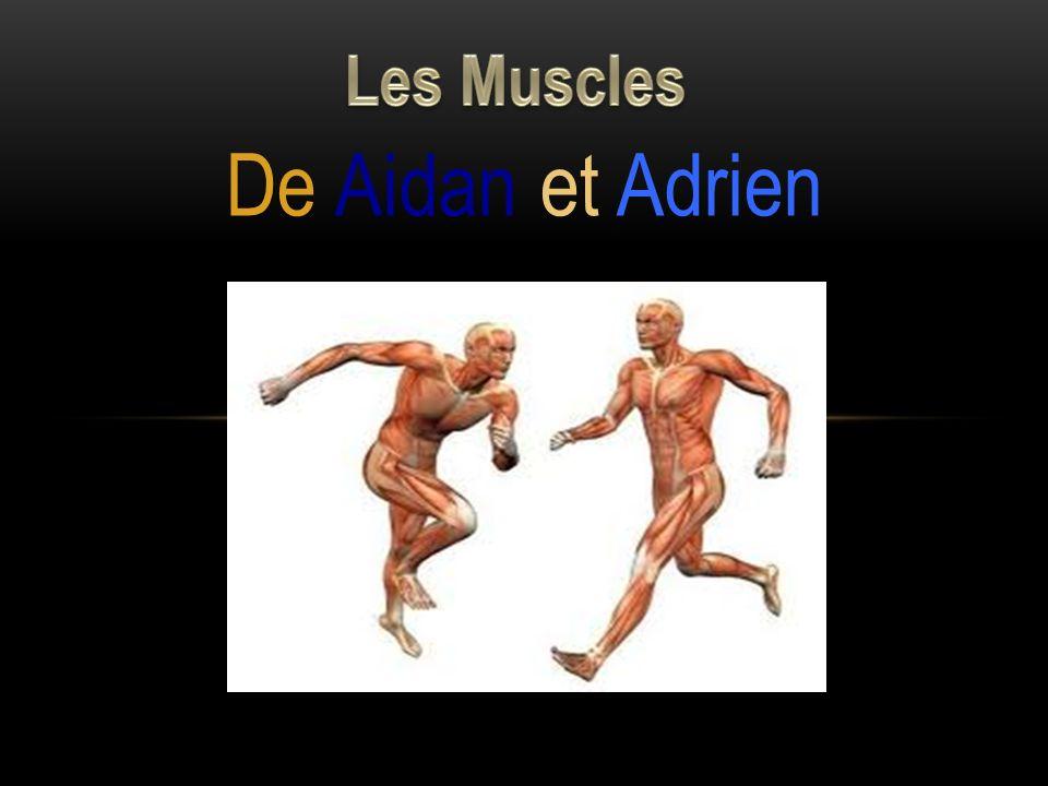 De Aidan et Adrien