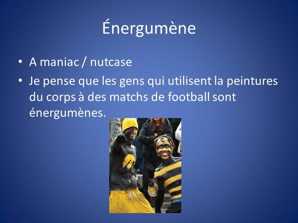 Énergumène A maniac / nutcase Je pense que les gens qui utilisent la peintures du corps à des matchs de football sont énergumènes.