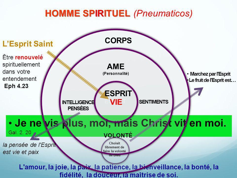 HOMME SPIRITUEL HOMME SPIRITUEL (Pneumaticos) Marchez par l'Esprit Le fruit de l'Esprit est… Être renouvelé spirituellement dans votre entendement Eph