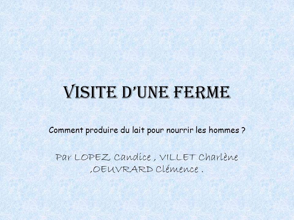 Visite dune ferme Comment produire du lait pour nourrir les hommes ? Par LOPEZ Candice, VILLET Charlène,OEUVRARD Clémence.