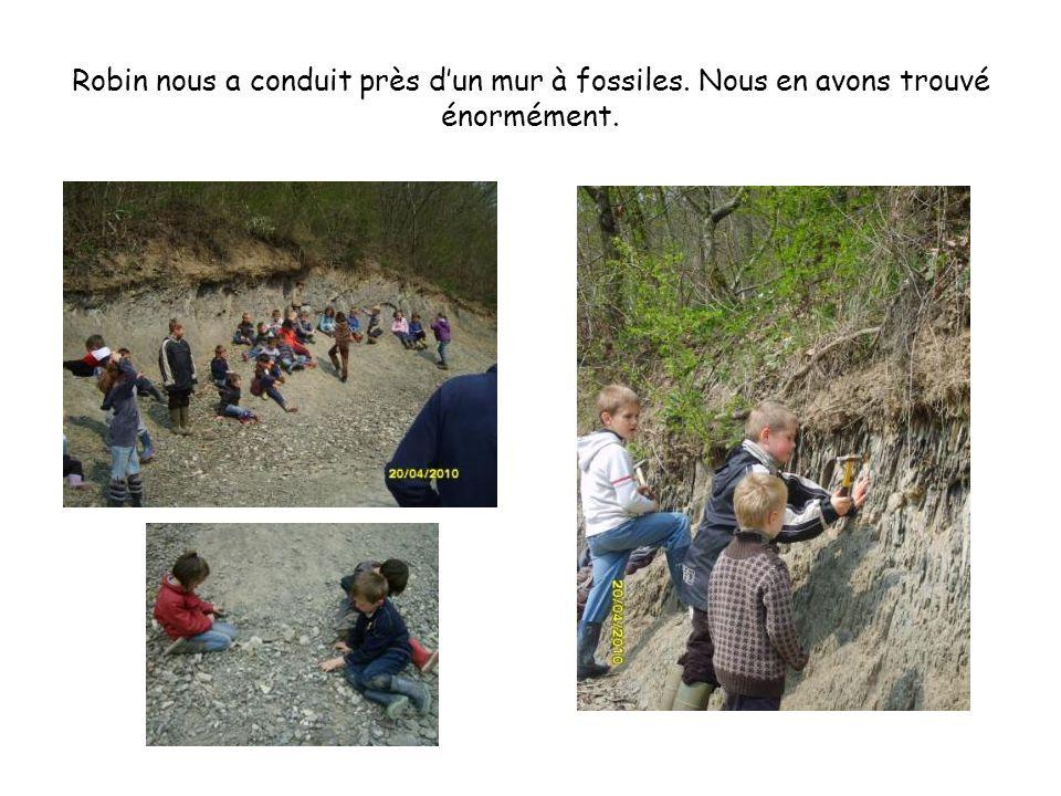 Robin nous a conduit près dun mur à fossiles. Nous en avons trouvé énormément.