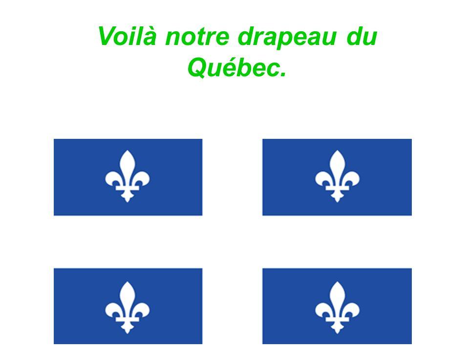 Notre langue principale est le français.