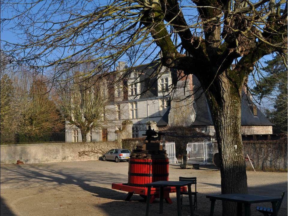 Nous arrivons au Château de Nitray, dont les vignes produisent une gamme de vins très appréciés.