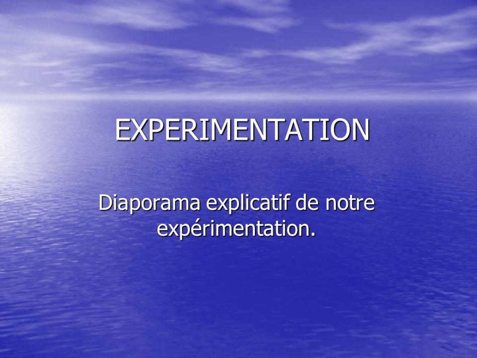 EXPERIMENTATION Diaporama explicatif de notre expérimentation.