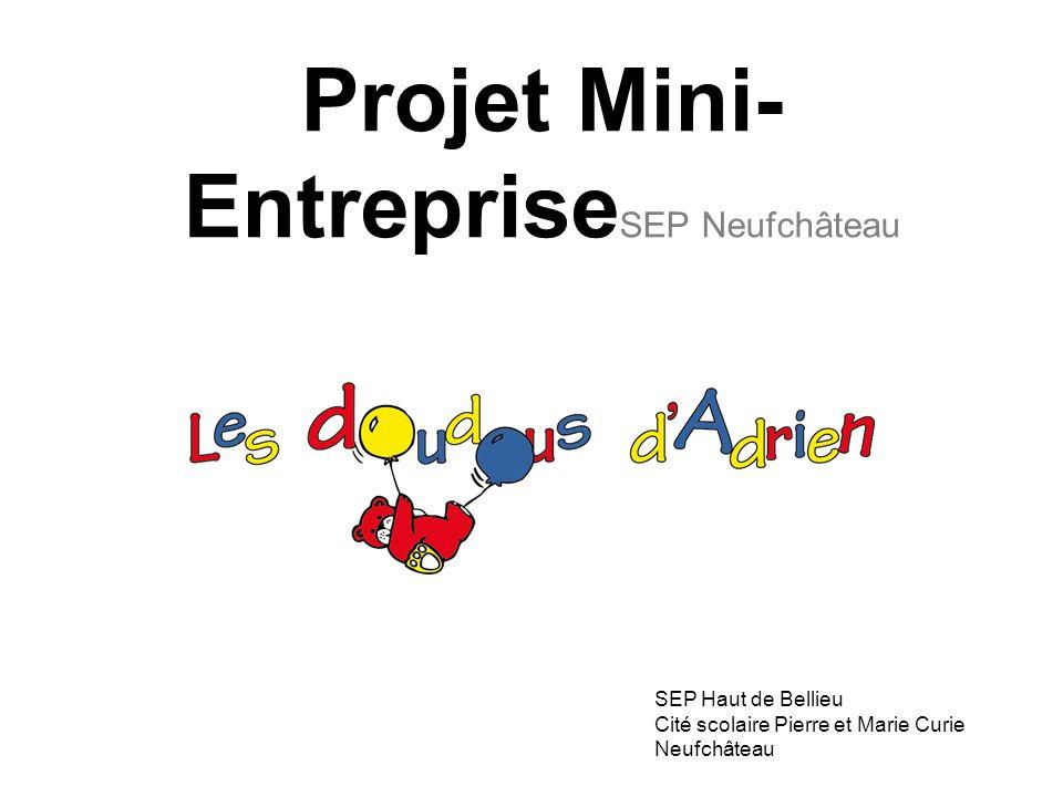 Projet Mini- Entreprise SEP Neufchâteau SEP Haut de Bellieu Cité scolaire Pierre et Marie Curie Neufchâteau