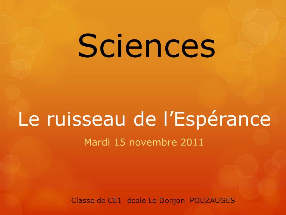 Le ruisseau de lEspérance Mardi 15 novembre 2011 Sciences Classe de CE1 école Le Donjon POUZAUGES