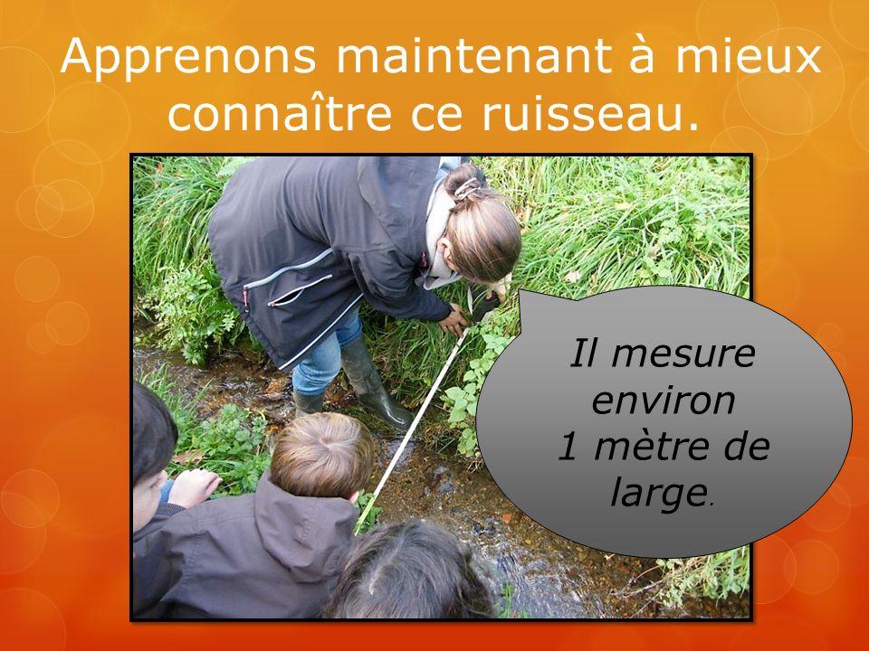 Apprenons maintenant à mieux connaître ce ruisseau. Il mesure environ 1 mètre de large.