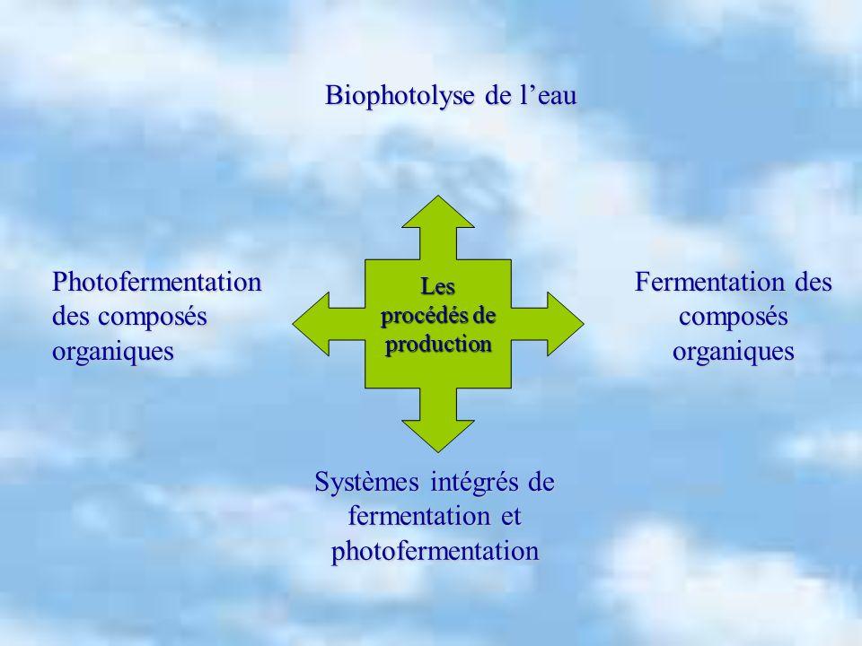 Les procédés de production Fermentation des composés organiques Systèmes intégrés de fermentation et photofermentation Photofermentation des composés