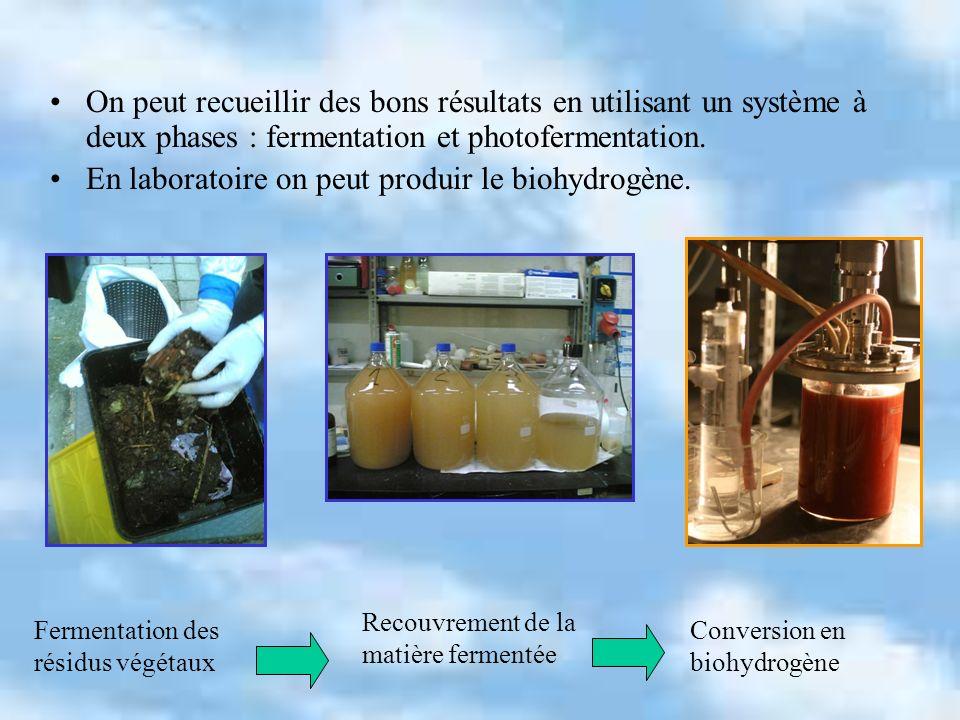 On peut recueillir des bons résultats en utilisant un système à deux phases : fermentation et photofermentation. En laboratoire on peut produir le bio