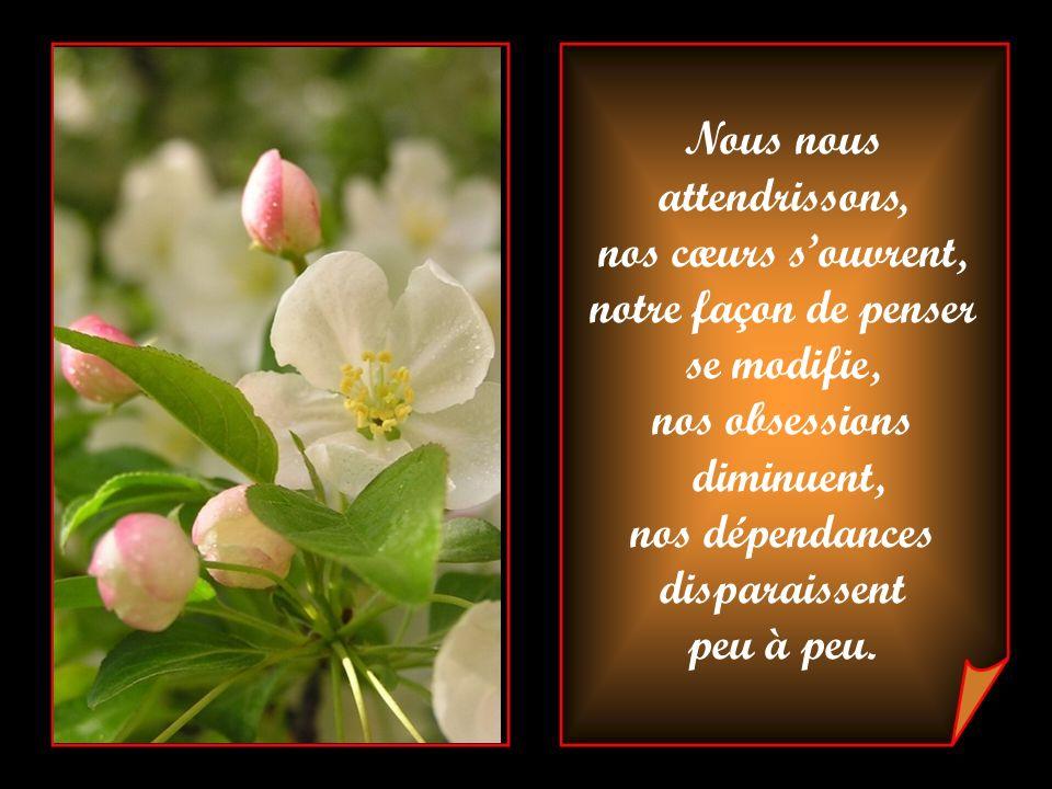 Lamour qui attirait nos âmes vers le lâcher prise, la vérité, la compassion et le pardon, est la force extraordinaire avec laquelle nous ferons, dorén
