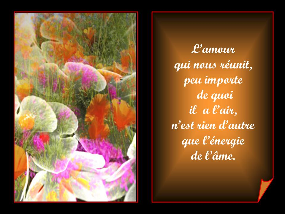 Lamour qui nous réunit, peu importe de quoi il a lair, nest rien dautre que lénergie de lâme.