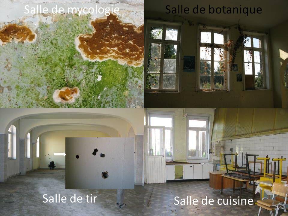 Salle de botanique Salle de tir Salle de cuisine Salle de mycologie