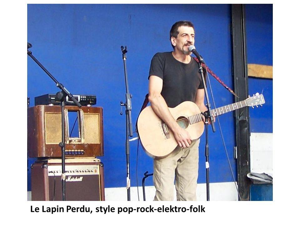 Le Lapin Perdu, style pop-rock-elektro-folk