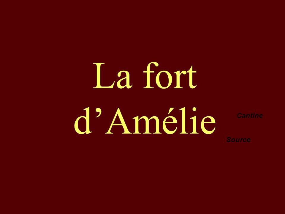La fort dAmélie Cantine Source