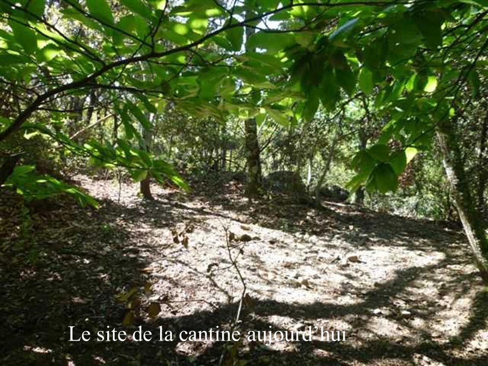 Le site de la cantine aujourdhui