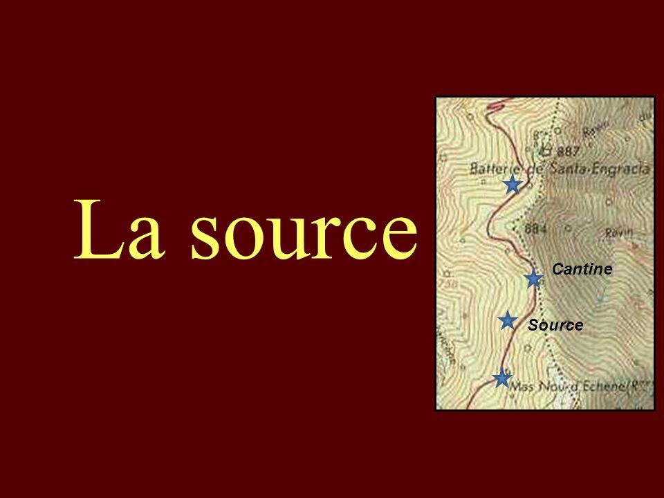 La source Cantine Source