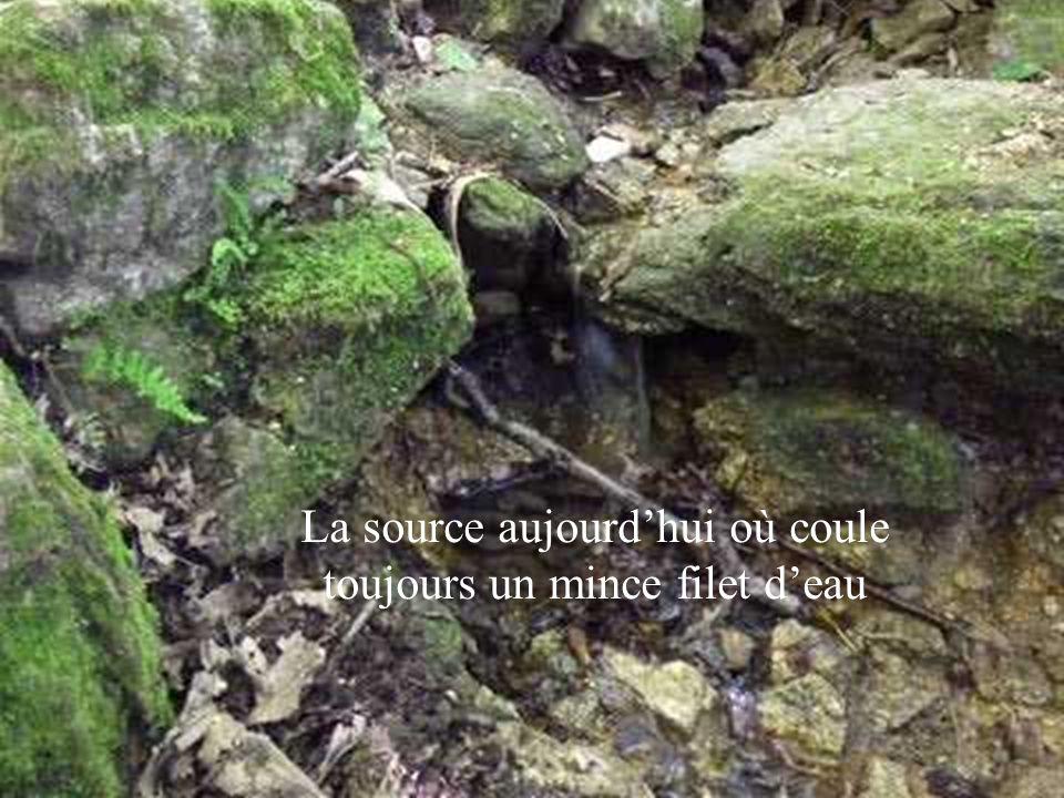 La source aujourdhui où coule toujours un mince filet deau
